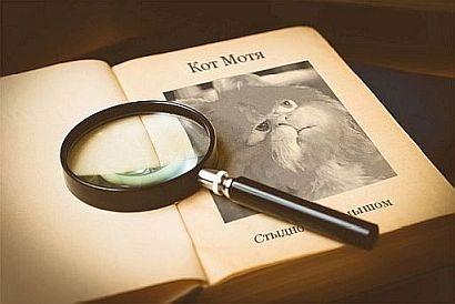 Блог Кота Моти: читверк