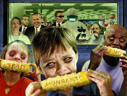 Тревожный Знак: Исследование подтверждает, что ДНК человека поглощает ГМО