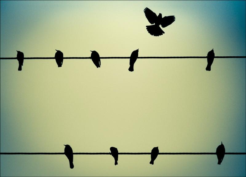 Пол Робинсон: Пора освободиться от Америки