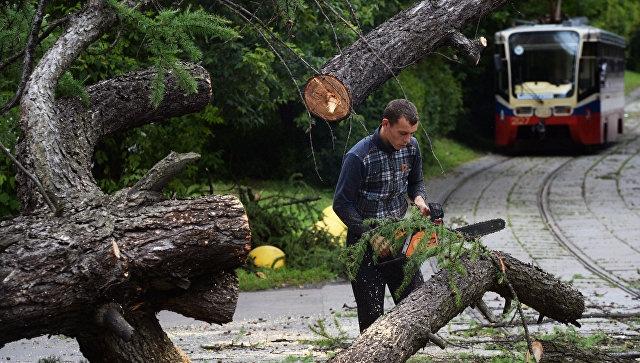 Эксперт: рост числа мощных ураганов –
