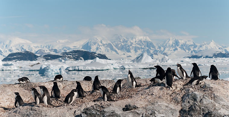 В Антарктике обнаружены огромные подледные каньоны