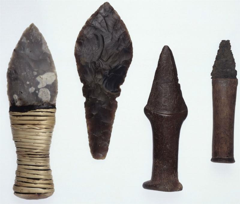 Страшные войны каменного века оставили одну мужскую генетическую линию на 17 женских
